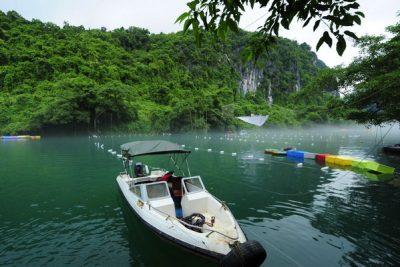 Phong Nha – Tien Son Cave Tour